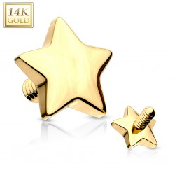 Embout microdermal étoile or-14K 4mm