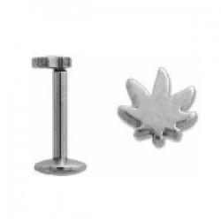 Piercing micro-labret 50 - Cannabis