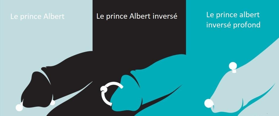 Piercing prince albert - types